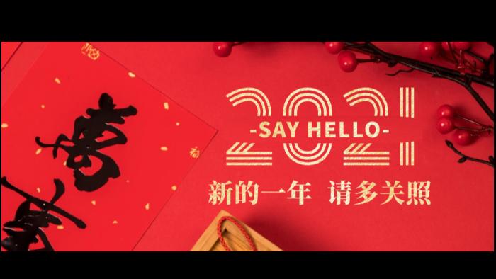 南阳易佰福食品祝您2021年元旦快乐!